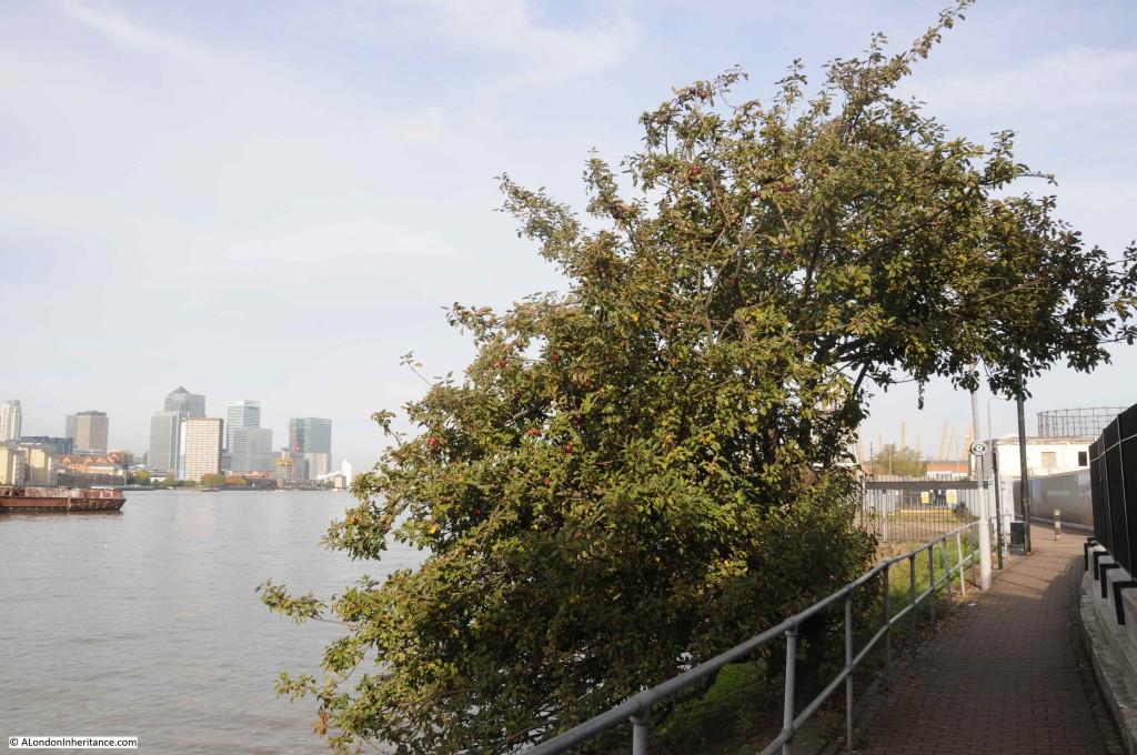Greenwich Peninsula 9
